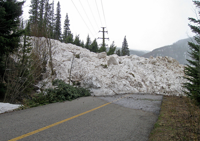 Avalanche! On the Bikepath