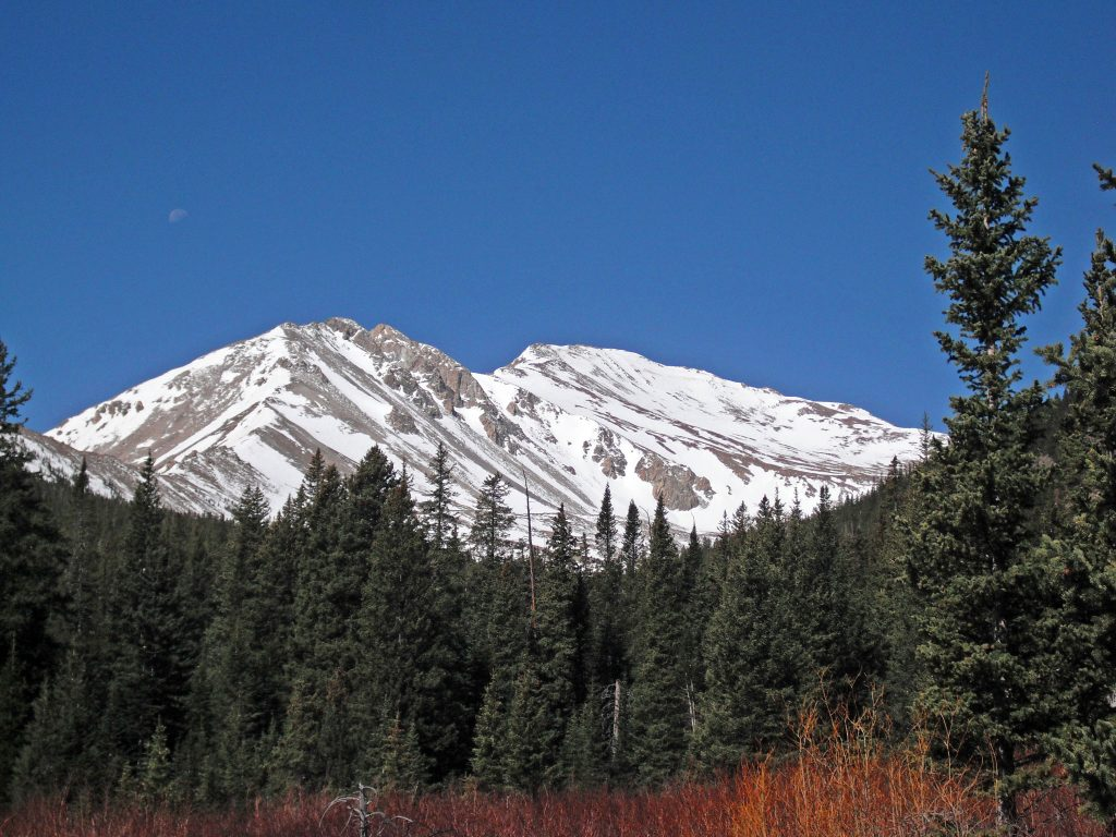 Mt. Yale seen from the Colorado Trail
