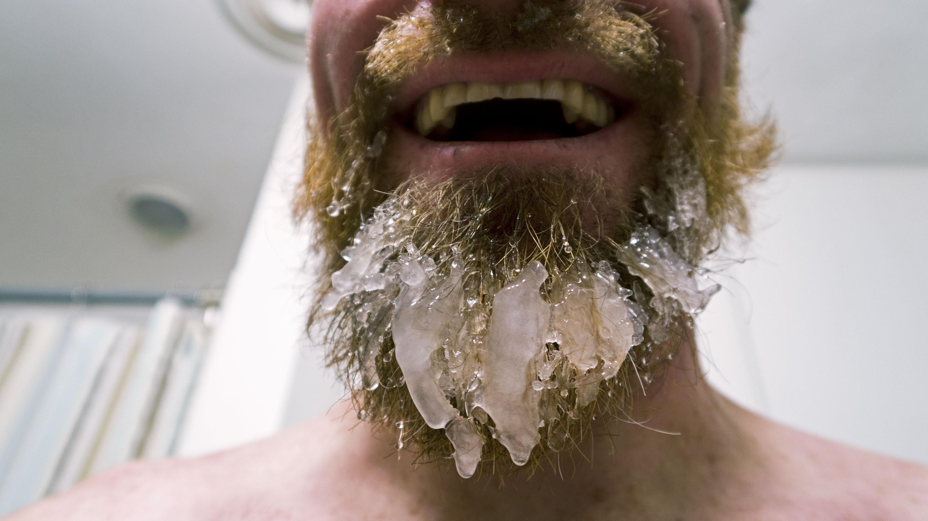 Beard-cicle