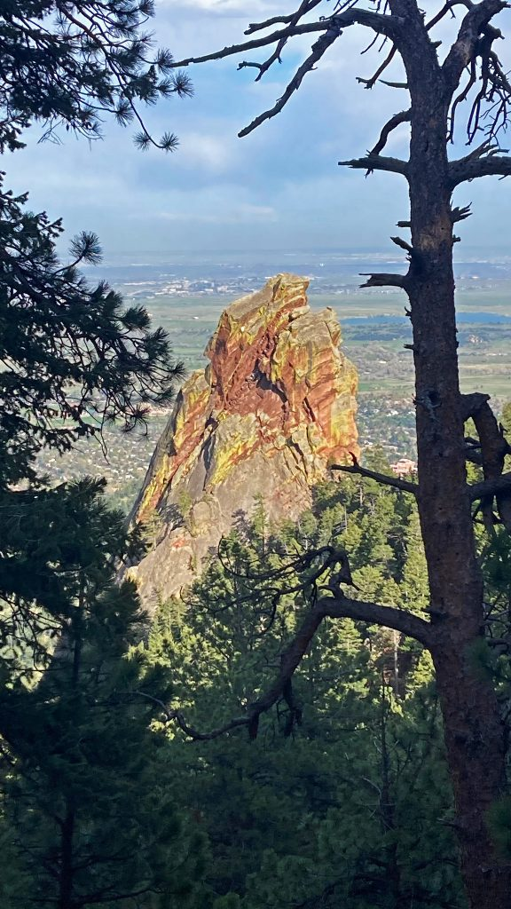 A mountain sentinel