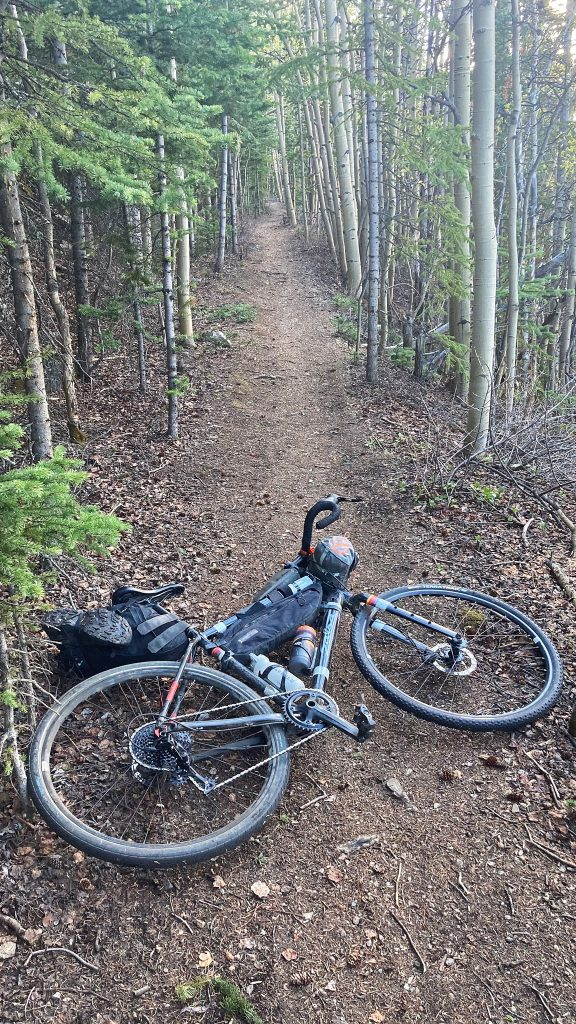 Bikepacking routes rarely get much better than the quiet singletrack through aspens!
